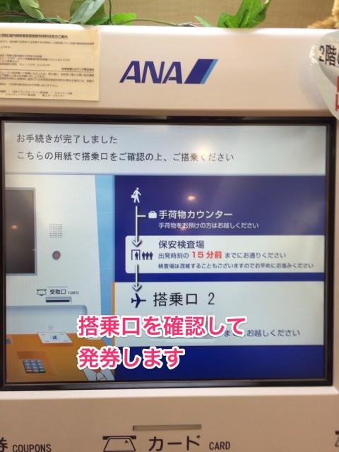 ana_yuutai11